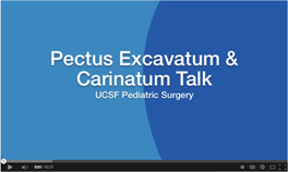 Pectus Talk Shin movie